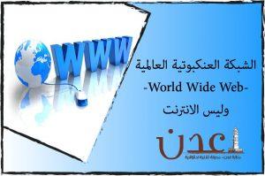 الشبكة العنكبوتية العالمية-World Wide Web-وليس الانترنت